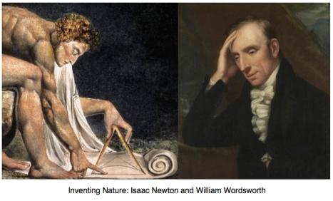 ww-newton